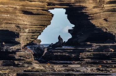 Galapagos – najlepsza lekcja przyrody w życiu
