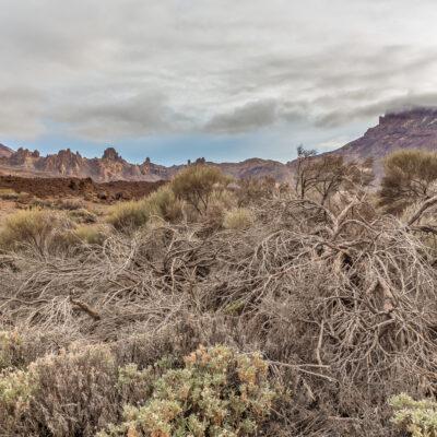 Teneryfa El Teide